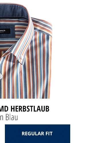 Extraglatt-Hemd Herbstlaub - Streifen Blau, Regular Fit | Walbusch