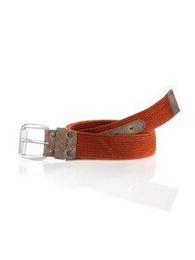 Cotton-Belt Orange Detail 1